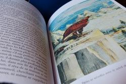 le hobbit coffret édition limitée illustré par Tolkien 3