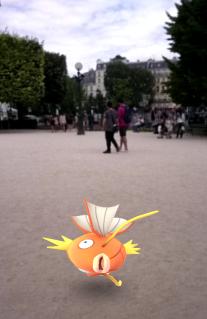 Magicarpe - Square Jean XXIII - Notre-Dame de Paris - Pokemon Go