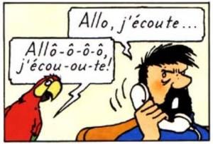 Allo j'écoute perroquet Bijoux de la castafiore