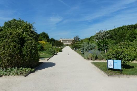 Jardins des Plantes Paris été 2017