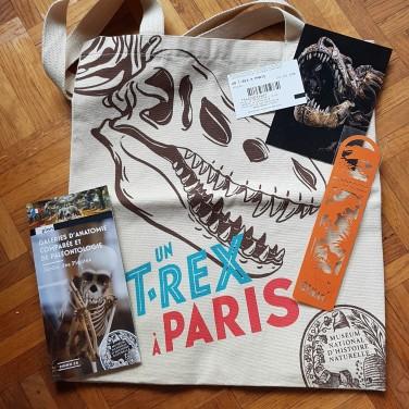 Un T. Rex à Paris boutique