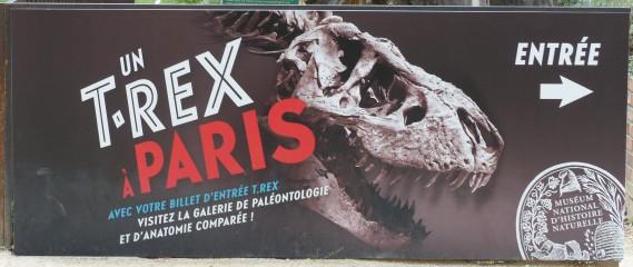 Un T. Rex à Paris - Museum Histoire Naturelle
