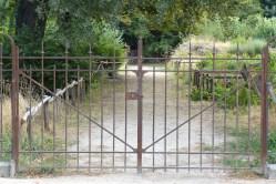 Jardin des Plantes Paris