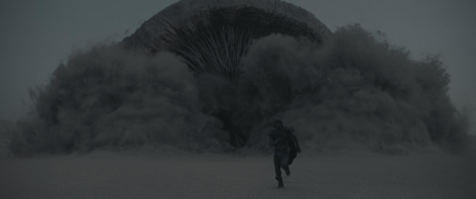 dune-ver-des-sables